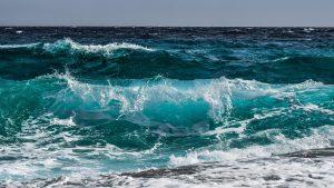La pescamar: Por qué nos gusta tanto